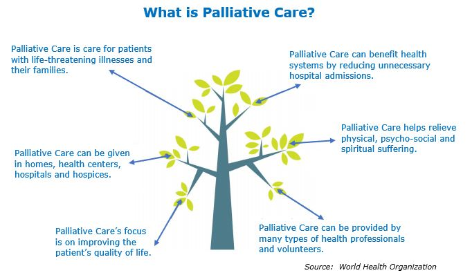 Palliative Care Comes of Age